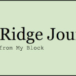 Bay Ridge Journal_Featured